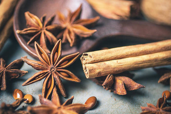 Photograph - Anise And Cinnamon 4842 By Tl Wilson Photography by Teresa Wilson