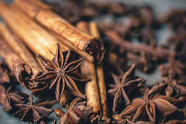 Photograph - Anise And Cinnamon 4858 By Tl Wilson Photography  by Teresa Wilson