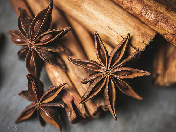 Photograph - Anise And Cinnamon 4864 By Tl Wilson Photography by Teresa Wilson