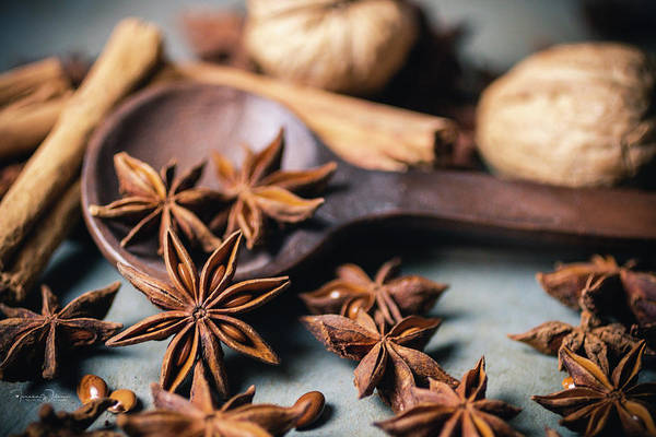Photograph - Anise, Cinnamon, And Walnuts  4837 By Tl Wilson Photography  by Teresa Wilson