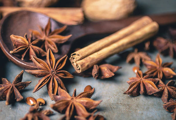 Photograph - Anise, Cinnamon, And Walnuts  4840 By Tl Wilson Photography  by Teresa Wilson