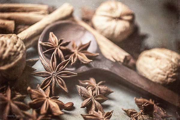 Photograph - Anise, Cinnamon, And Walnuts By Tl Wilson Photography  by Teresa Wilson