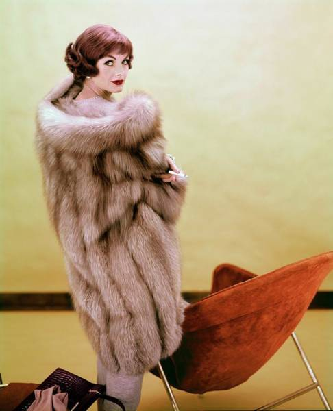 Photograph - Anne St. Marie Wearing Fredrica by Henry Clarke
