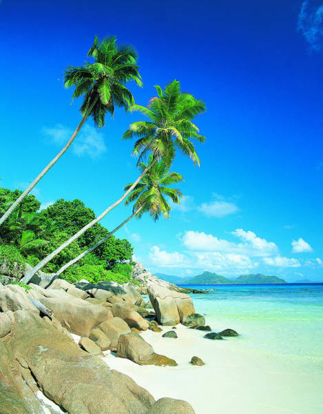Anse Severe With Praslin Island In Art Print