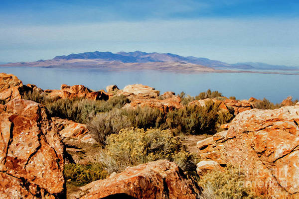 Mixed Media - Antelope Island Utah by David Millenheft