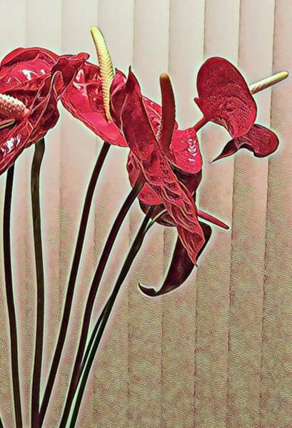 Photograph - Anthurium Profiles Aloha  by Joalene Young