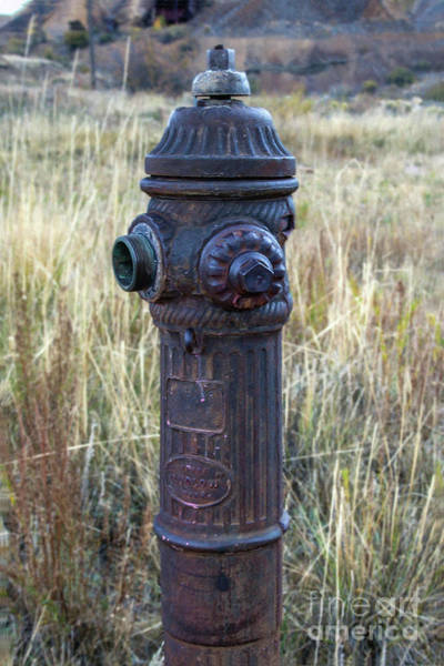 Photograph - Antique Fire Hydrant by Tony Baca