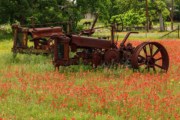 Wall Art - Photograph - Antique Tractors In Field Of Red by Adam Jones