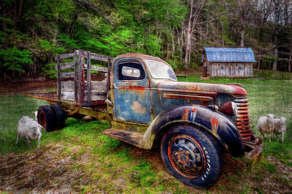 Photograph - Antique Truck At The Farm by Debra and Dave Vanderlaan