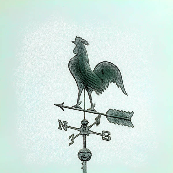 Wind Vane Digital Art - Any Way The Wind Blows by Leslie Montgomery