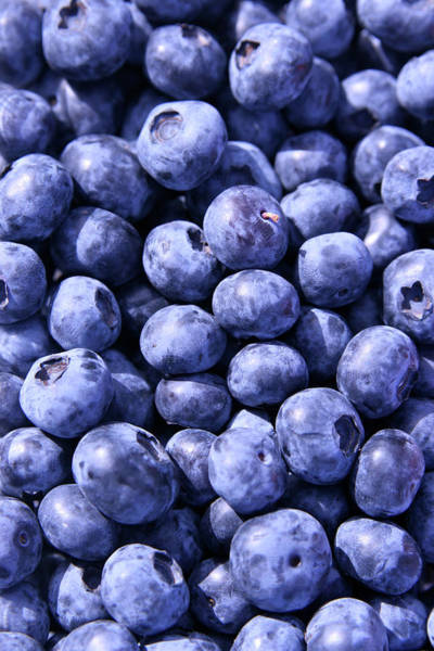 Wall Art - Photograph - Anyone For Blueberries by Pastorscott