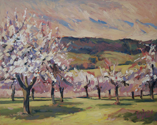 Painting - Apple Blossom Geuldal by Nop Briex