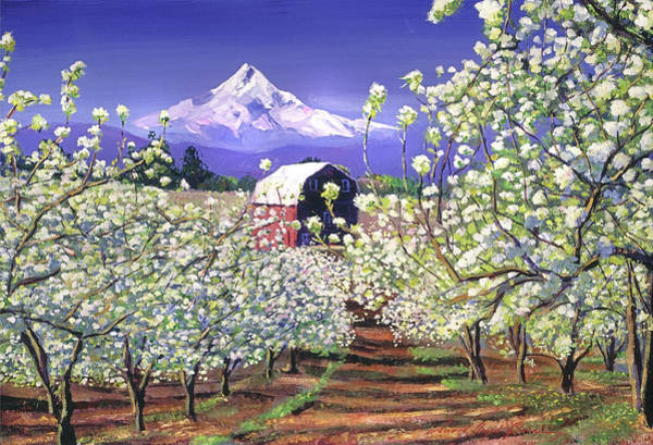 Apple Orchard Painting - Apple Blossom Time by David Lloyd Glover