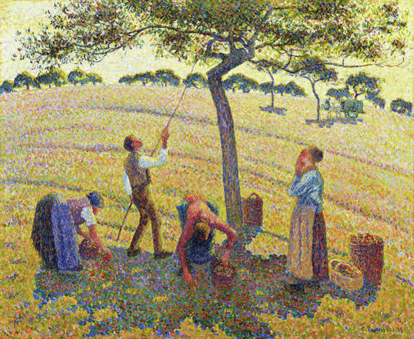 Wall Art - Painting - Apple Harvest At Eragny - Digital Remastered Edition by Camille Pissarro