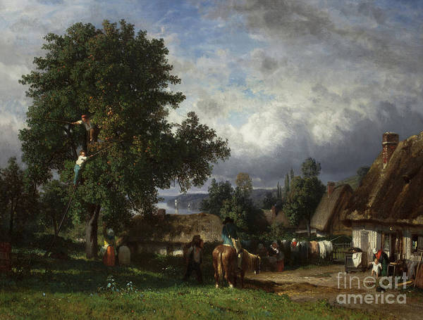 Wall Art - Painting - Apple Harvest In Normandy by Constant-Emile Troyon