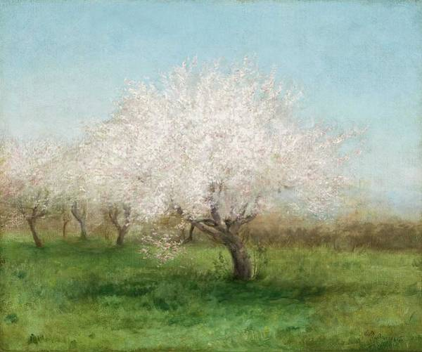 Wall Art - Painting - Apple Trees In A Meadow ,  Edward Mitchell Bannister American, 1828  1901 by Celestial Images