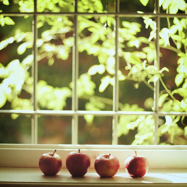 Wall Art - Photograph - Apples In Line by Les Hirondelles Photography