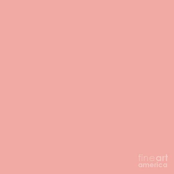Wall Art - Photograph - Apricot Blush by Sharon Mau
