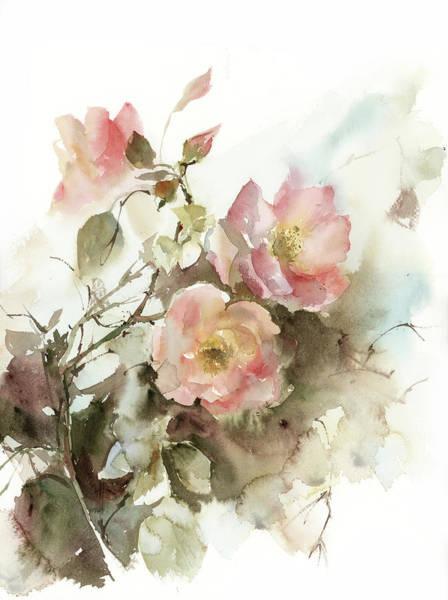 Wall Art - Painting - Apricot Roses I by Sophia Rodionov