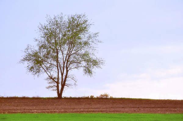 Photograph - April Horizon  by JAMART Photography
