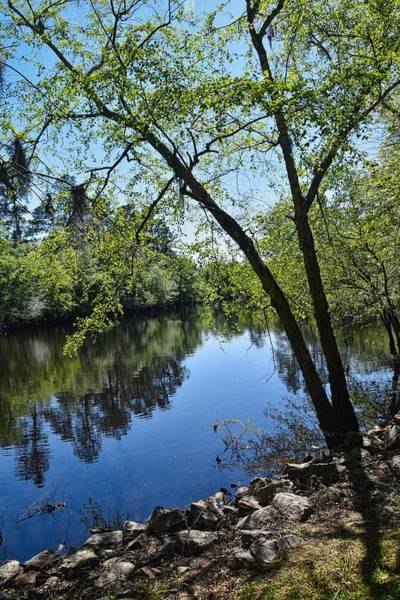 Wall Art - Photograph - April On The River by Linda Brown