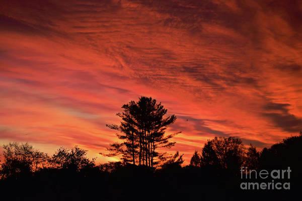 Photograph - April Sunrise by Patti Whitten