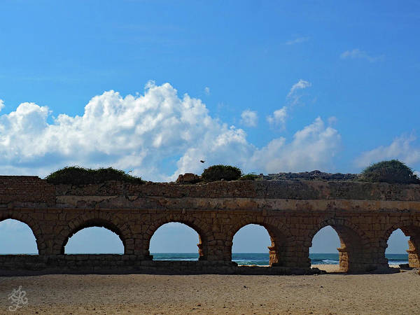 Wall Art - Photograph - Aqueduct Archways by Ginger Repke