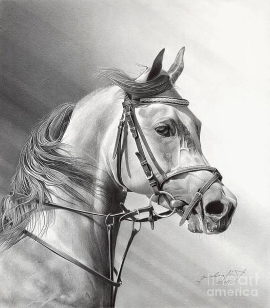 Wall Art - Drawing - Arabian Beauty by Miro Gradinscak