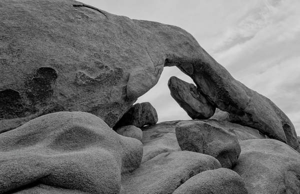 Photograph - Arch Rock - Black And White by Loree Johnson