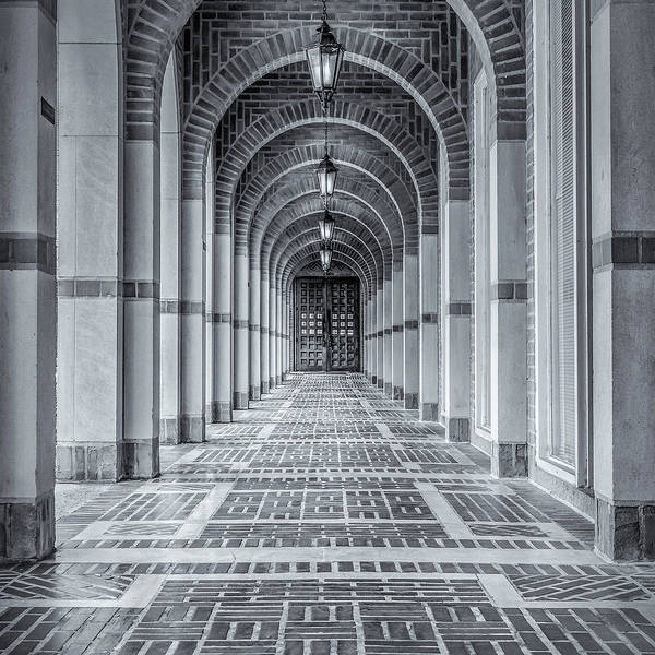 Photograph - Arched Walkway by James Woody
