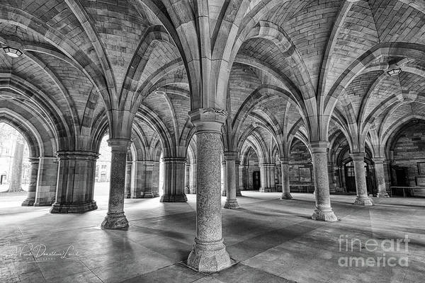 Wall Art - Photograph - Arches by Wendi Donaldson Laird