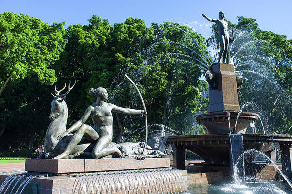 Wall Art - Photograph - Archibald Fountain Sydney by David L Moore