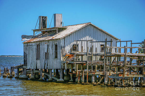 Photograph - Archie's Fish House #1 by Tom Claud