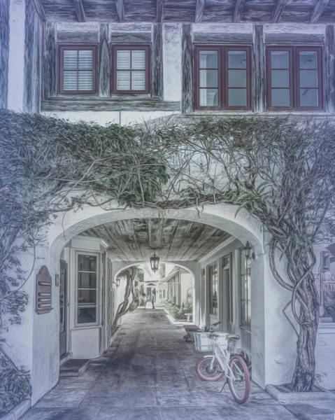 Photograph - Archway To Paradise In Cool Gray Tones by Debra and Dave Vanderlaan