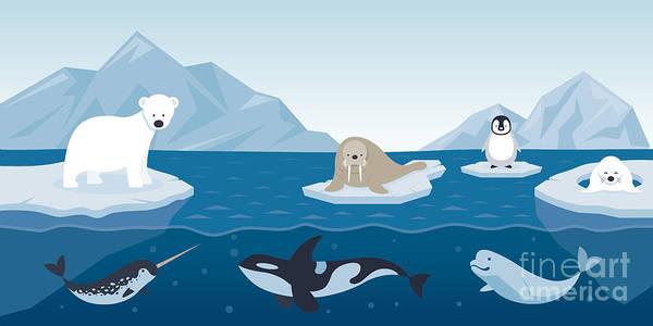 Arctic Animals Character And Art Print