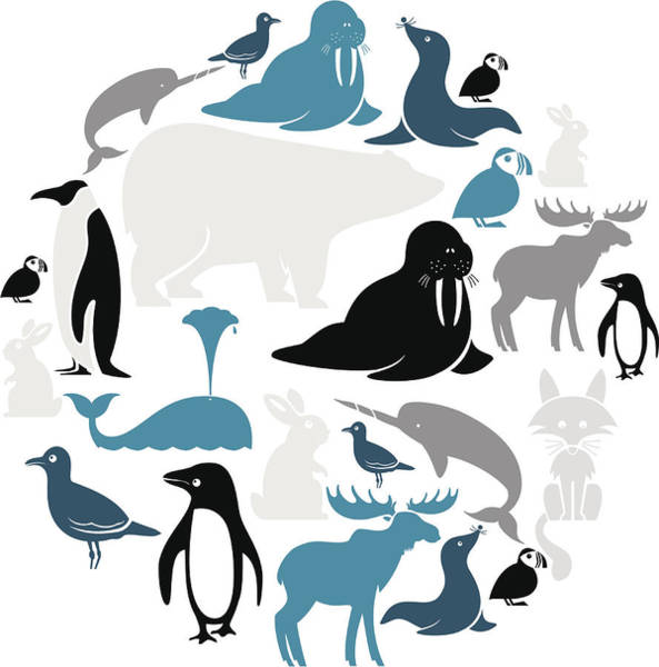 Seagull Digital Art - Arctic Animals Icon Set by Theresatibbetts