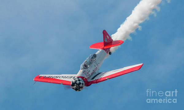 Photograph - Aeroshell Dive by Tom Claud