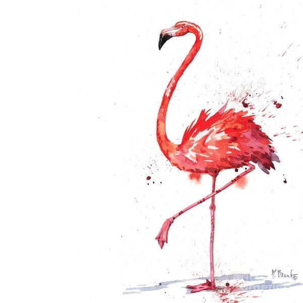 Wall Art - Painting - Arianna Flamingo II by Paul Brent