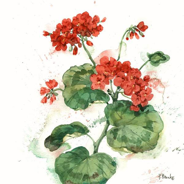 Red Geraniums Wall Art - Painting - Arianna Geraniums II - White by Paul Brent