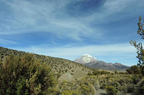 Wall Art - Photograph - Arid Altiplano Landscape, Sajama by Anthony Asael