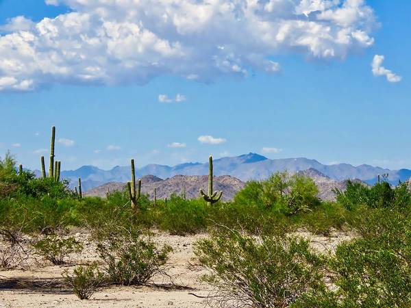 Photograph - Arizona Desert Hidden Valley by Judy Kennedy