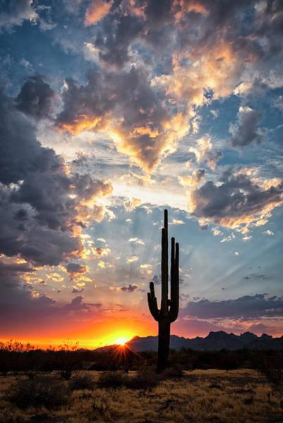 Wall Art - Photograph - Arizona Flagship Skies  by Saija Lehtonen