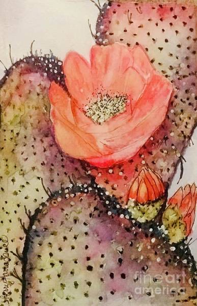 Painting - Arizona Is Blooming  by Sherry Harradence