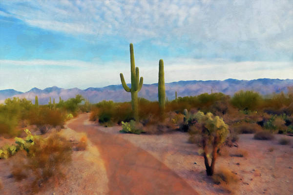 Painting - Arizona Landscape - 02 by Andrea Mazzocchetti