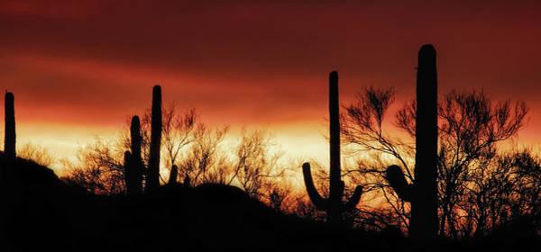 Photograph - Arizona Monsoon Sunset 2019 by Elaine Malott