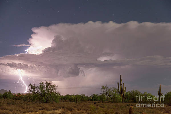 Photograph - Arizona Power by James BO Insogna