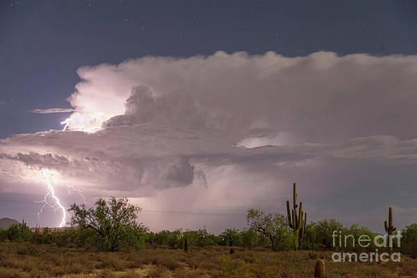 Wall Art - Photograph - Arizona Power by James BO Insogna
