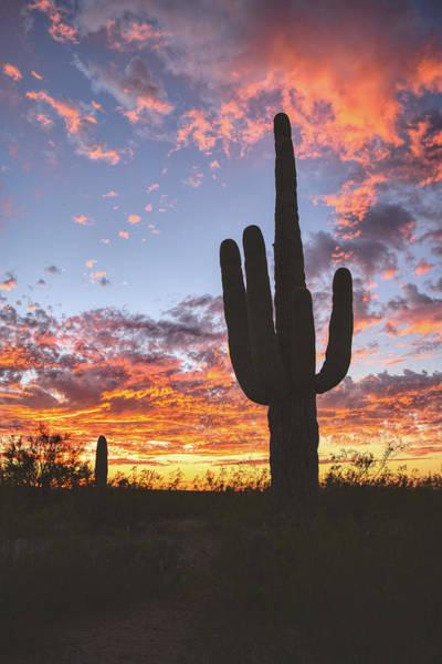 Photograph - Arizona Skies by Chance Kafka