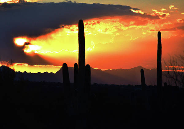 Photograph - Arizona Sky Glow by Chance Kafka