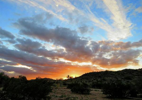 Photograph - Arizona Sonoran Desert Sunset by Judy Kennedy